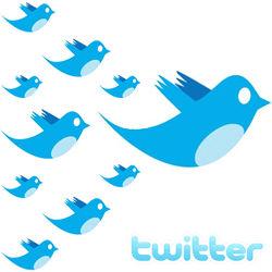 terminos basicos en twitter
